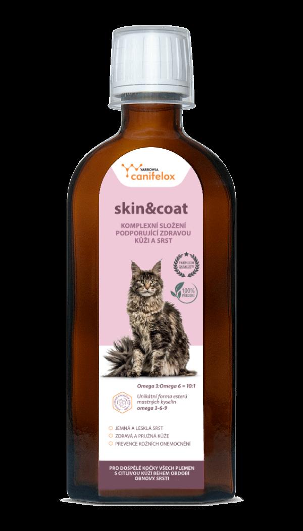 skin&coat cat